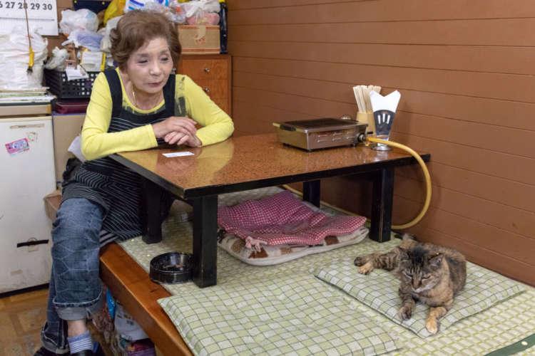 多い時には店の周りにいる9匹の面倒を見ていた小迫田さん。「地域猫も減ったのでブチが最後の猫になりそう」