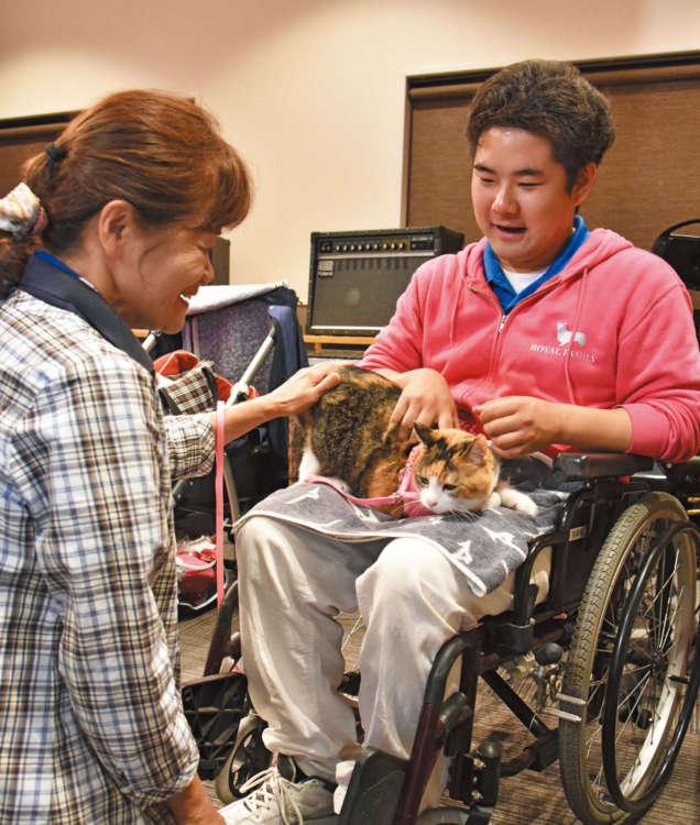 訓練中の服部家のミーちゃん。飼い猫を連れての授業というのは全国でも珍しい。腰トントンで気持ち良くトレーニング