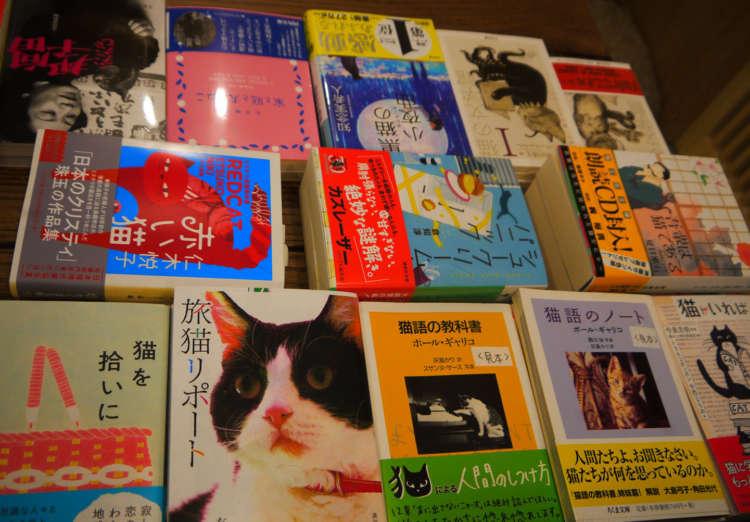 ずらりと並ぶ猫本は圧巻!