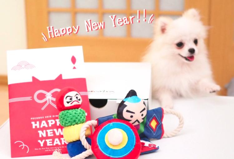 PECOBOXお正月号、期間限定受付中♪ 愛犬が喜ぶギフトについて、詳しく解説します!