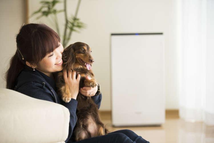 犬の専門家おすすめ! 「室内犬のニオイ対策」で最も効果が高い方法とは⁉︎