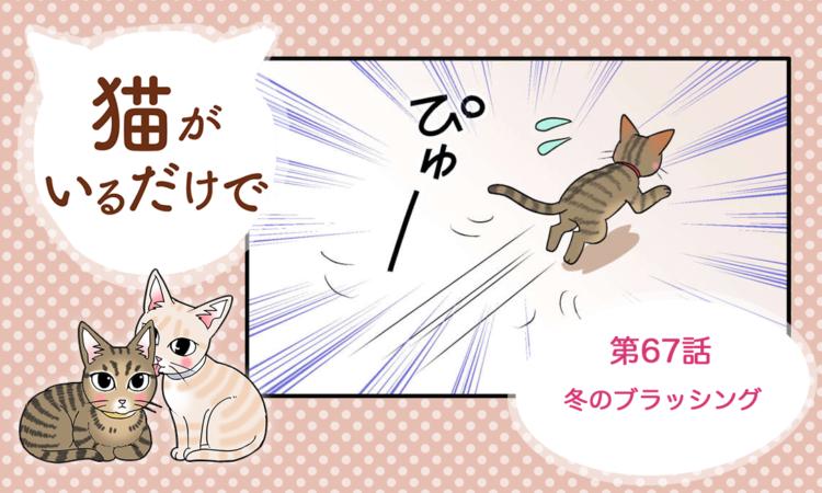 【まんが】第67話:【冬のブラッシング】まんが描き下ろし連載♪ 猫がいるだけで(著者:暁龍)