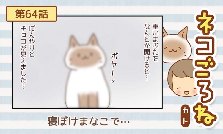 【まんが】第64話:【寝ぼけまなこで…】まんが描き下ろし連載♪ ネコごろね(著者:カト)