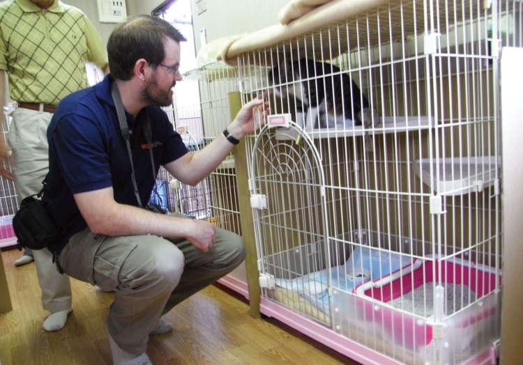 同行避難の猫を飼い主が世話をする避難所敷地内の猫ハウス(福島市内)