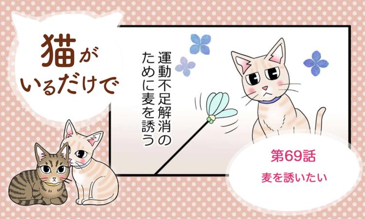 【まんが】第69話:【麦を誘いたい】まんが描き下ろし連載♪ 猫がいるだけで(著者:暁龍)