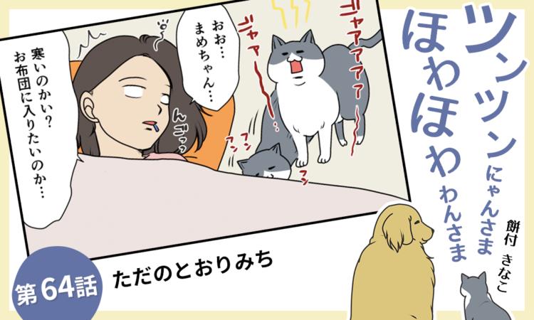 【まんが】第64話:【ただのとおりみち】まんが描き下ろし連載♪ ツンツンにゃんさま ほわほわわんさま