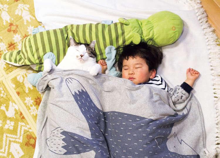 ふとっちょ猫×子供に癒される♡ ほっこりとした日常に心が温まる写真集♪