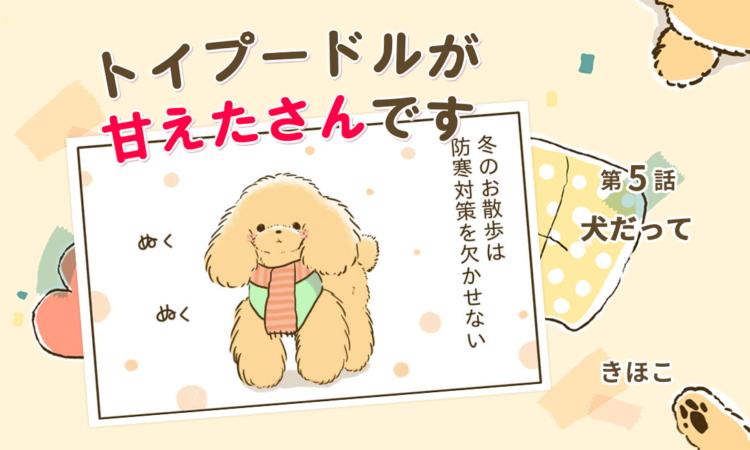 【まんが】第5話:【犬だって】まんが描き下ろし連載♪トイプードルが甘えたさんです