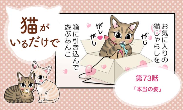 【まんが】第73話:【本当の姿】まんが描き下ろし連載♪ 猫がいるだけで(著者:暁龍)