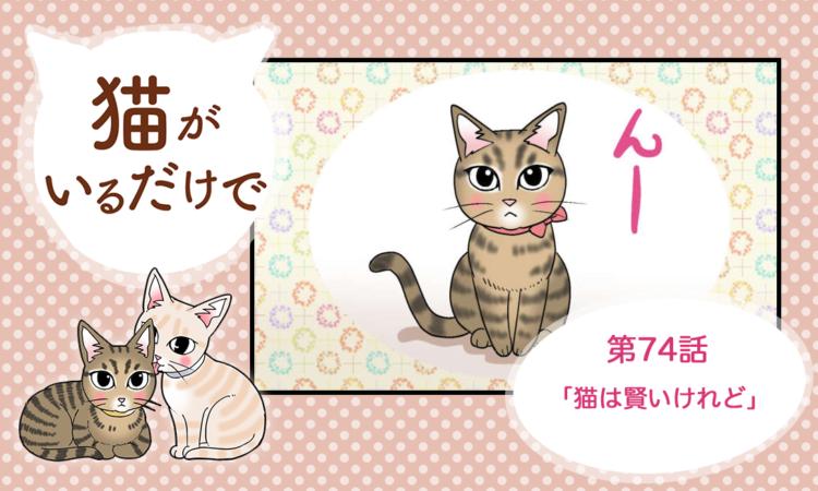 【まんが】第74話:【猫は賢いけれど】まんが描き下ろし連載♪ 猫がいるだけで(著者:暁龍)