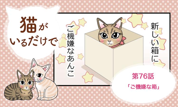 【まんが】第76話:【ご機嫌な箱】まんが描き下ろし連載♪ 猫がいるだけで(著者:暁龍)