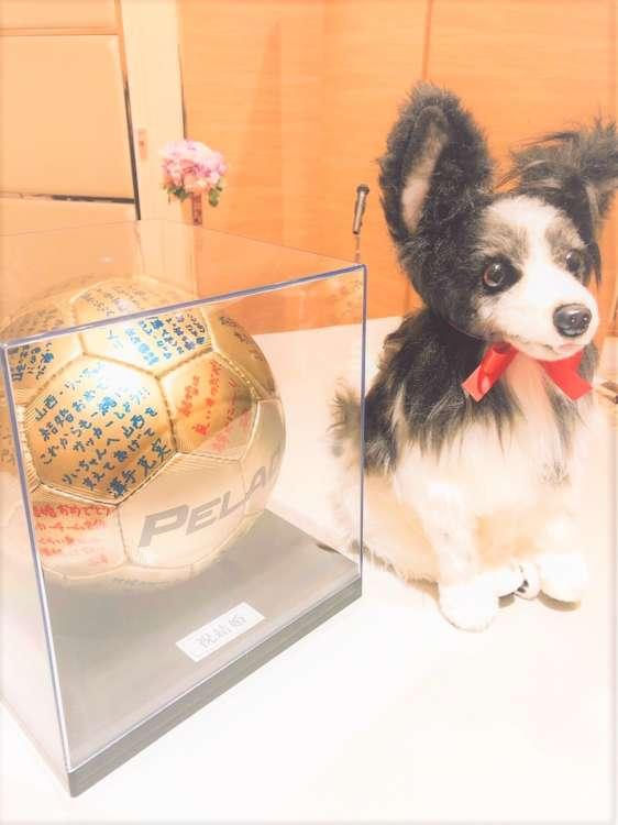 犬 結婚式 パピヨン ぬいぐるみ オーダーメイド いぬ