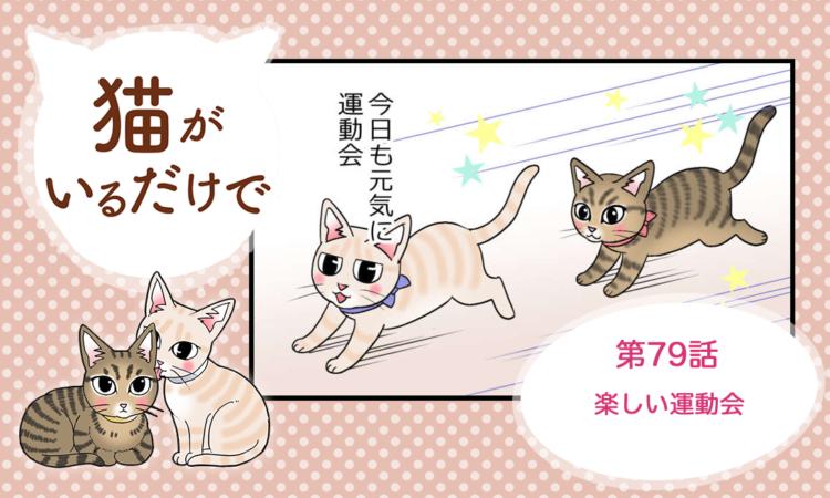 【まんが】第79話:【楽しい運動会】まんが描き下ろし連載♪ 猫がいるだけで(著者:暁龍)