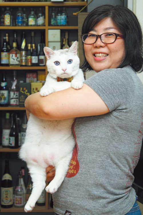 スタッフの長嶺さん(42歳)に抱っこされて。「写真撮影は慣れてるニャー」