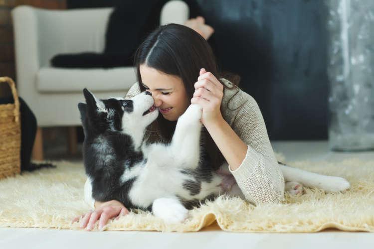 ソファーやカーペットから愛犬のニオイがする…。簡単に消臭できる方法は何かない?