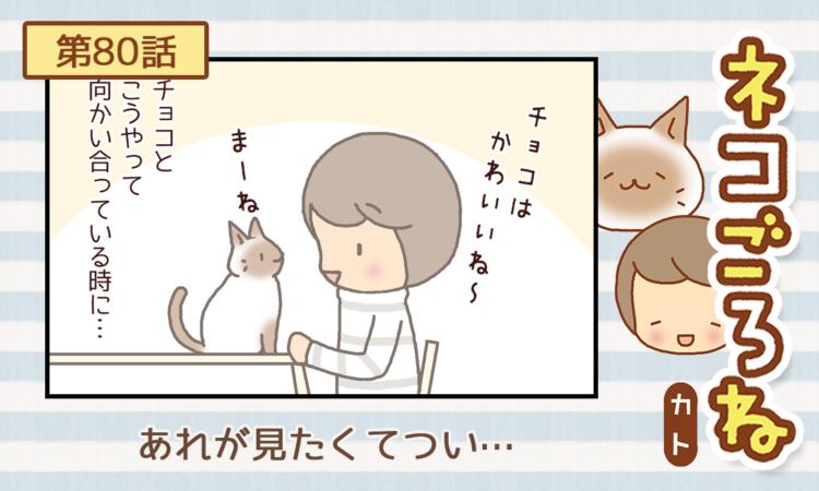 【まんが】第80話:【あれが見たくてつい…】描き下ろし連載♪ ネコごろね(著者:カト)