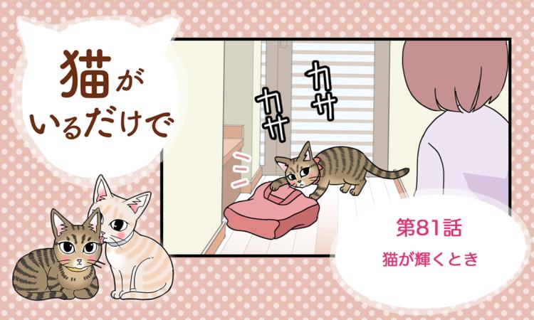 【まんが】第81話:【猫が輝くとき】まんが描き下ろし連載♪ 猫がいるだけで(著者:暁龍)