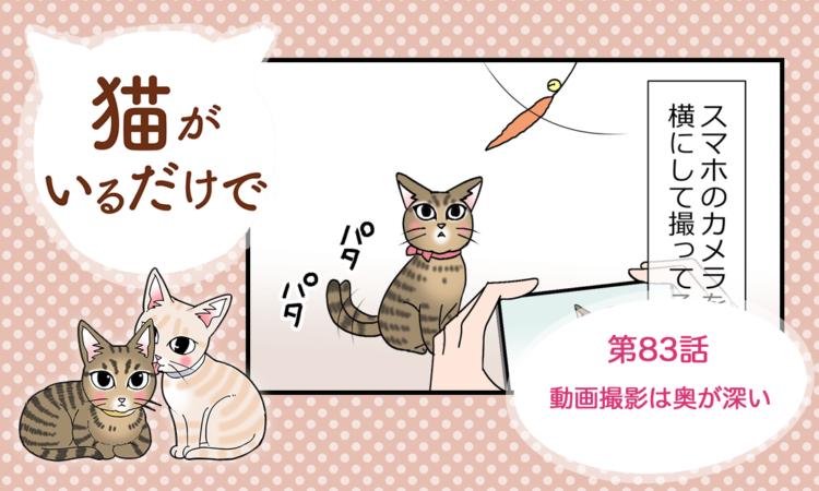 【まんが】第83話:【動画撮影は奥が深い】まんが描き下ろし連載♪ 猫がいるだけで(著者:暁龍)