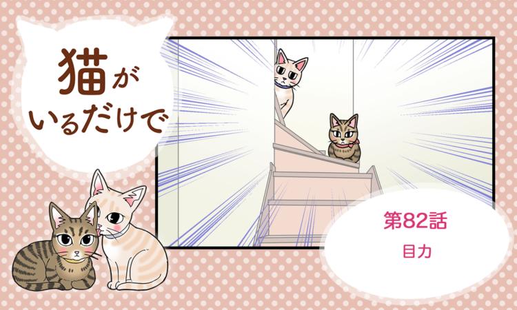 【まんが】第82話:【目力】まんが描き下ろし連載♪ 猫がいるだけで(著者:暁龍)