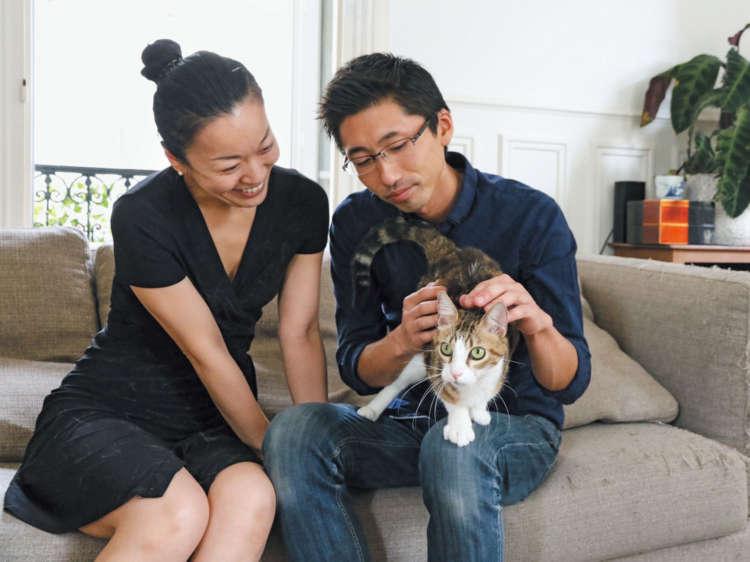 猫はかすがい。幸宗さんもすっかりミルフィーユと仲良しに