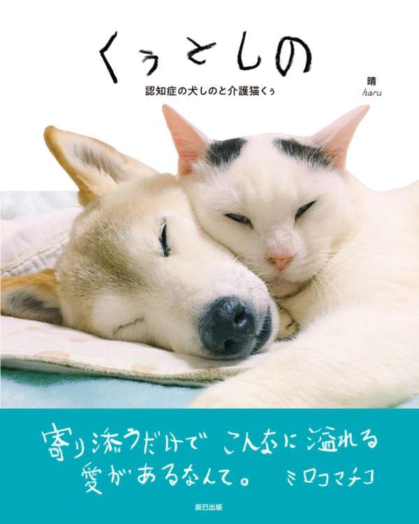 認知症の柴犬「しの」を支える猫「くぅ」。ふたりの日々を綴ったフォトブック『くぅとしの』が発売