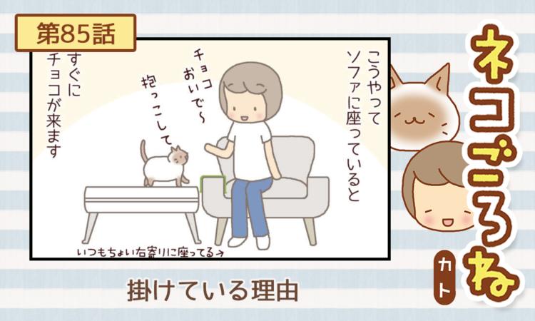 【まんが】第85話:【掛けている理由】描き下ろし連載♪ ネコごろね(著者:カト)
