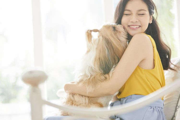 【獣医師監修】なぜ、犬は人の顔を舐めるのか?犬があなたの顔を舐める4つの理由!