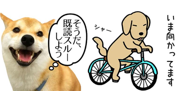 編集部おすすめLINEスタンプ☆ かわいさや個性をプラスして、楽しく会話しちゃおう〜(∩´∀`)∩
