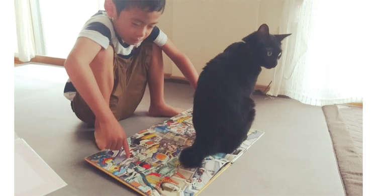 【目の前に…ちょこん】絵本を読んでいてもお構いなし! ニャンコの強引な撫でてアピールが可愛かった♡