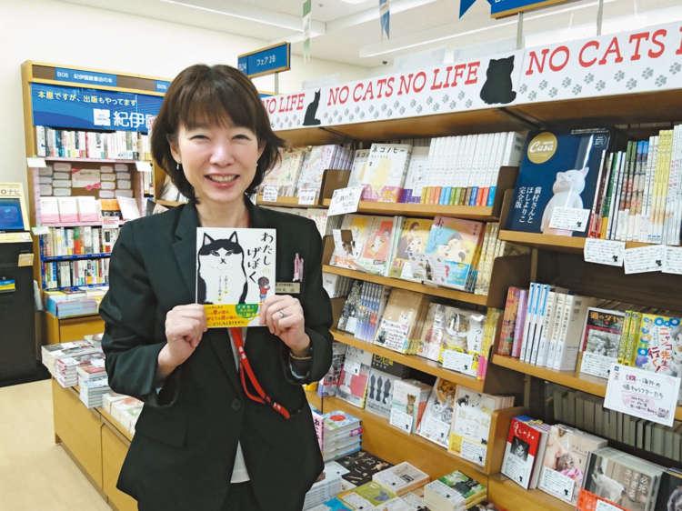 本屋さんが選ぶ猫の本【私のイチオシ!】