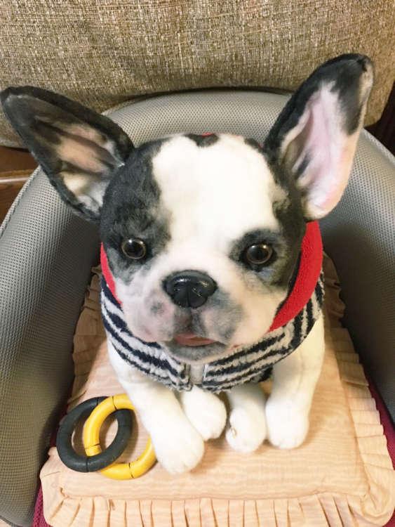 犬 フレンチブルドッグ ブルドッグ ぬいぐるみ オーダーメイド
