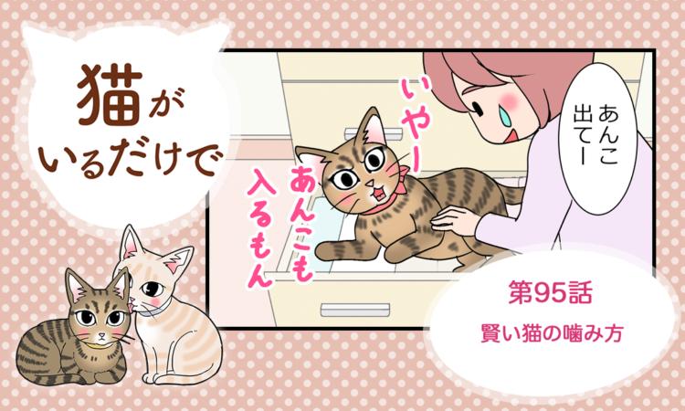 第95話:賢い猫の噛み方