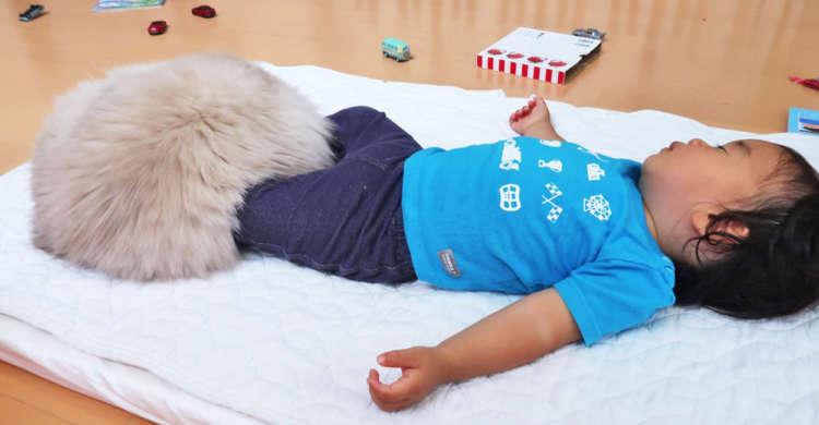 スヤスヤ眠る赤ちゃんの足元を覆う『謎のお布団』。まんまるふわふわの、その正体は…(=・ω・=)♪