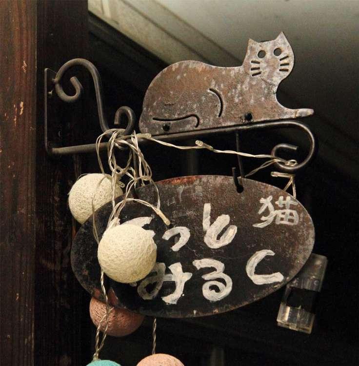 猫の集会所 ほっとみるく