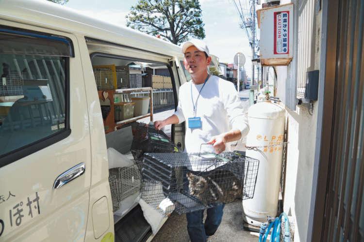 清川しっぽ村の吉島さんが手際よく猫たちを院内へ運ぶ