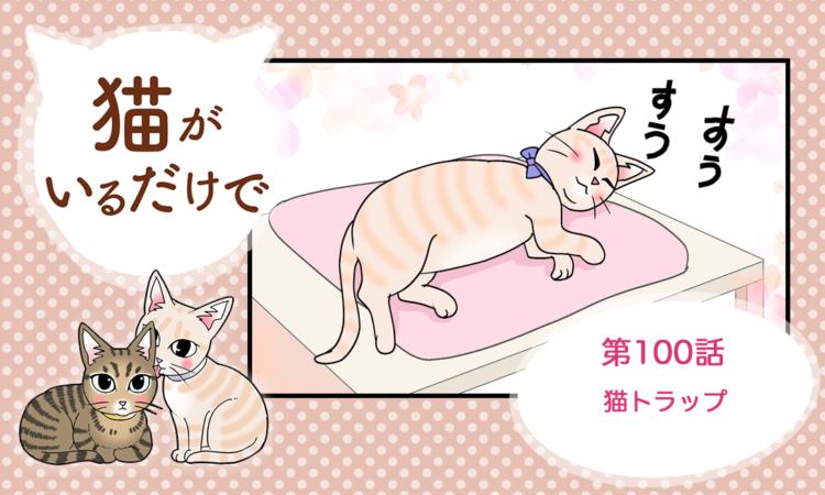 第100話:猫トラップ