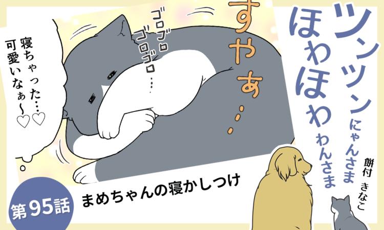 第95話:まめちゃんの寝かしつけ