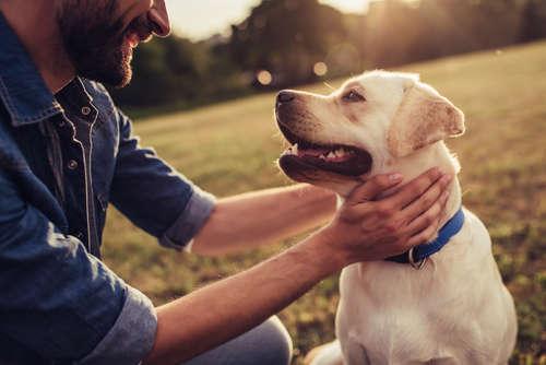 そんなペットとの共生は「癒し効果」を得られるだけでなく、実は子どもの心の発達や、人の健康維持にも大きな役割を果たすということが、近年の研究で明らかになっています。