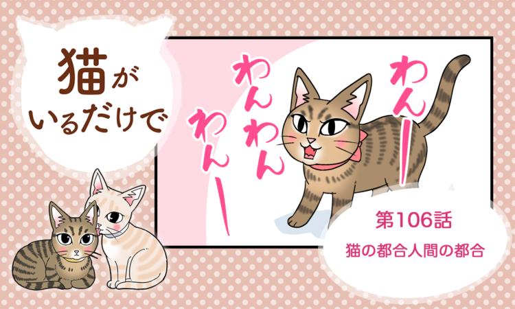 第106話:猫の都合人間の都合