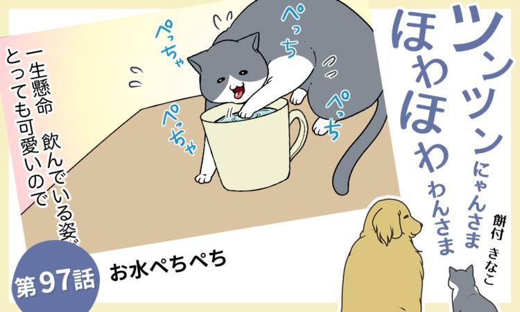 第97話:お水ぺちぺち