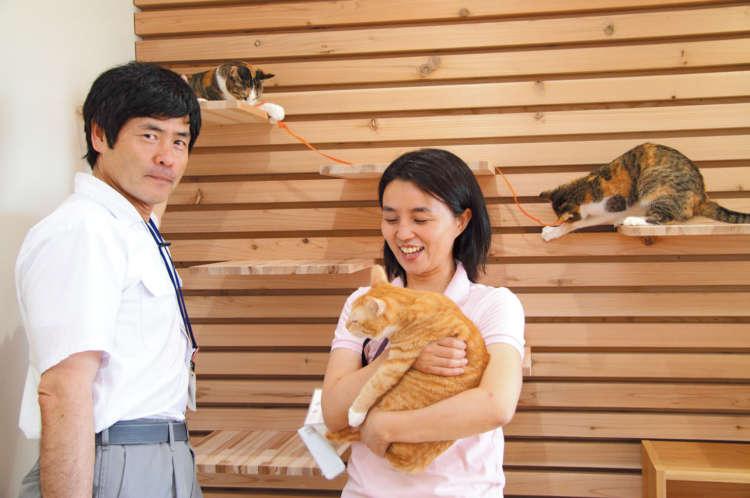 「疲れると、猫たちに癒やされに『toletta NYANルーム』にきます」