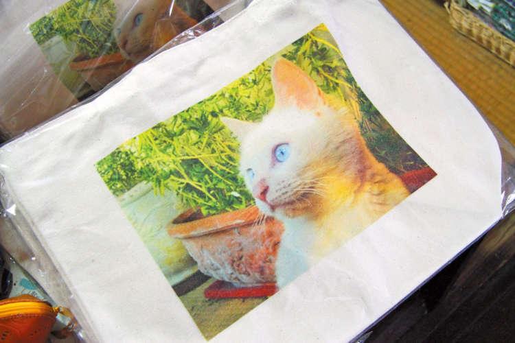 1階の猫グッズ売り場でマリントートバッグを発見