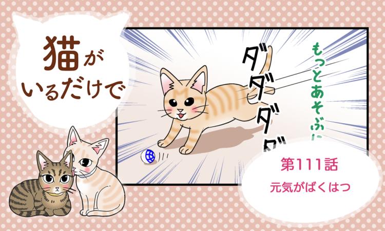 【まんが】第111話:【元気がばくはつ】まんが描き下ろし連載♪ 猫がいるだけで(著者:暁龍)