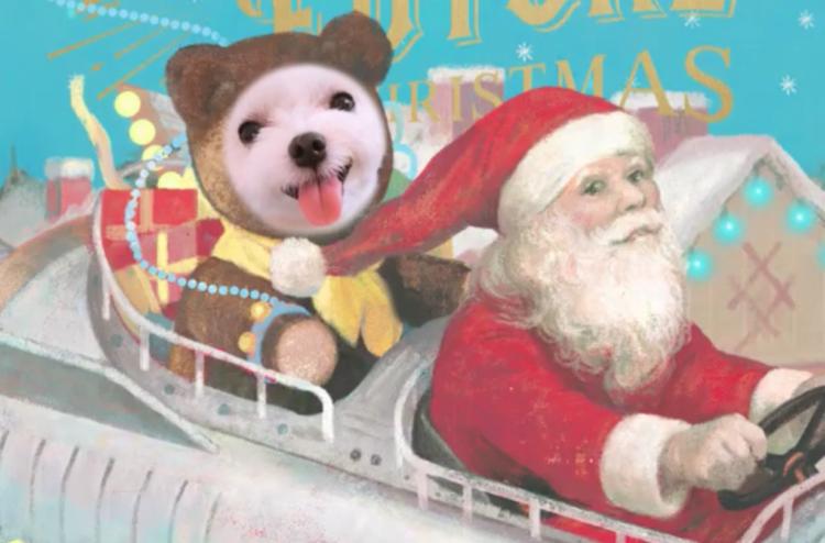 【世界にただひとつ!】愛犬・愛猫がクリスマスムービーカードに♪ 今すぐ贈ろう!