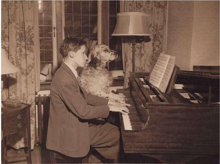 【DOG's TALE⑥】犬と音楽のステキな風景 第1回