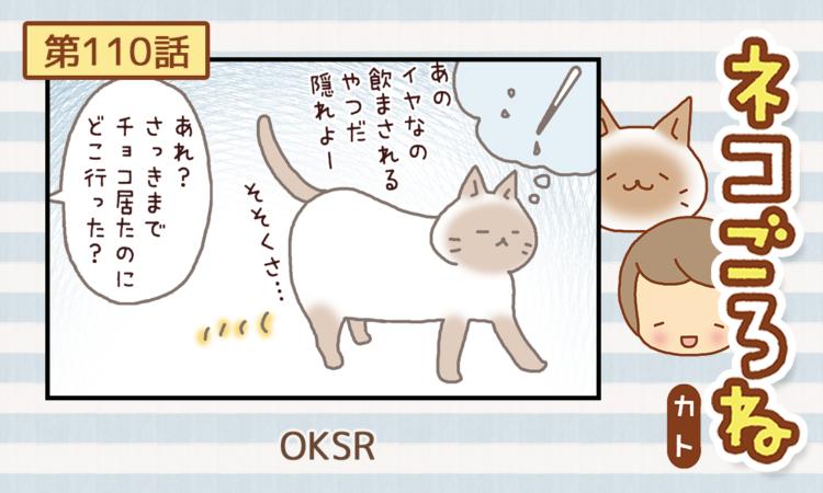 【まんが】第110話:【OKSR】まんが描き下ろし連載♪ ネコごろね(著者:カト)
