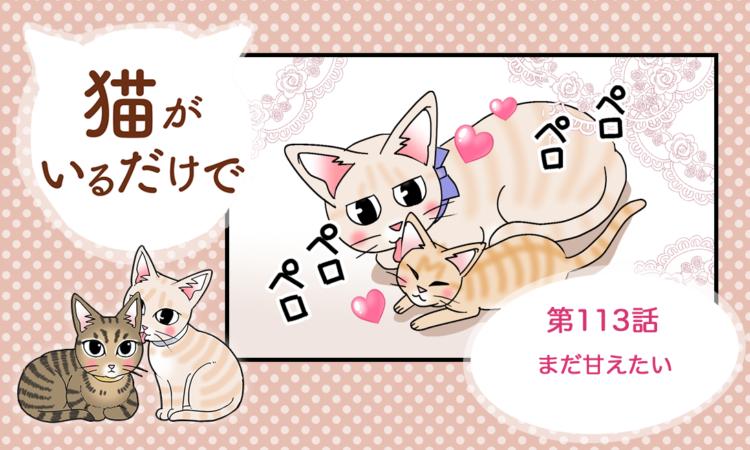【まんが】第113話:【まだ甘えたい】まんが描き下ろし連載♪ 猫がいるだけで(著者:暁龍)