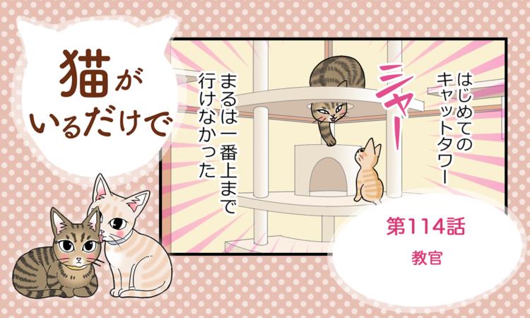 【まんが】第114話:【教官】まんが描き下ろし連載♪ 猫がいるだけで(著者:暁龍)