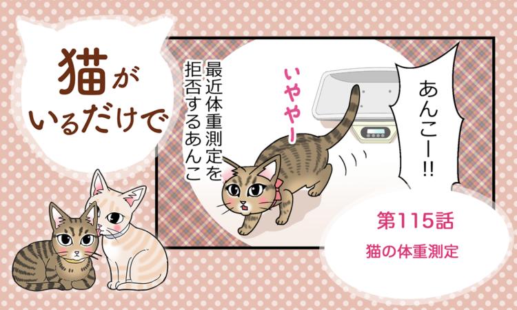 第115話:猫の体重測定