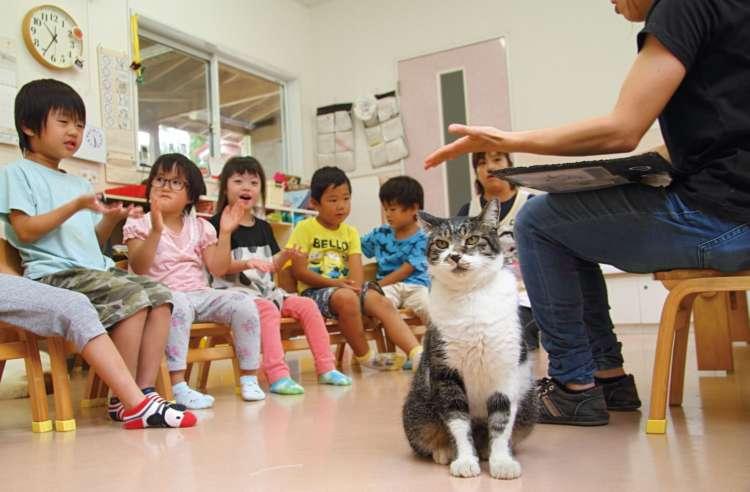 「動物さんといっしょのお勉強」の始まり。ジューン、早くもスタンバイ